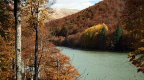 Vuelta al embalse de Irabia en la Selva de Irati