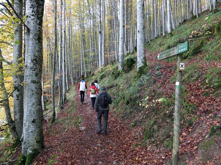 Vuelta al embalse de Irabia tramo Camino Beunza