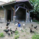 casa rural con granja para niños