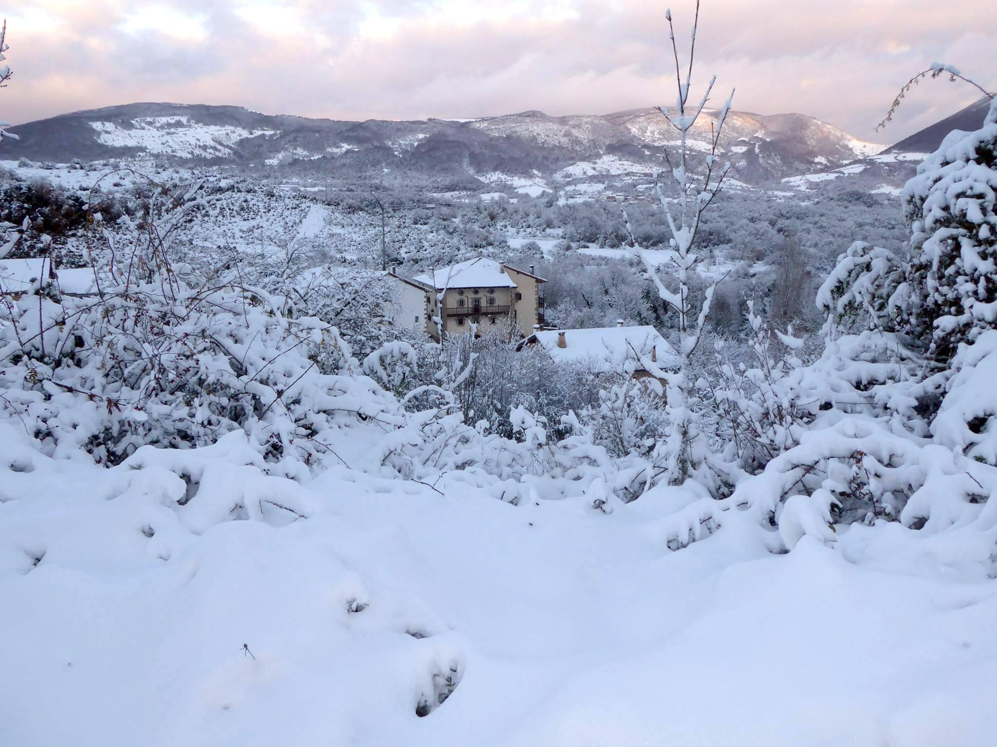 invierno en casa monaut